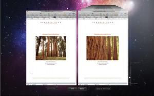 Mac OS X Lion Versions