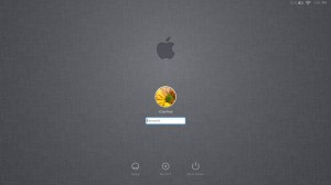 OS X Lion Login